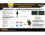 Non-Invasive Blood Glucose Monitoring System