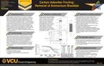 Carbon Adsorber Fouling: Removal of Ammonium Bisulfate