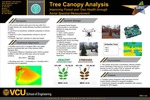 Tree Canopy Analysis: Improving Forest and Tree Health through Aerial Spectral Measurement
