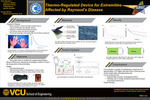 Thermo-Regulated Device for Extremities Affected by Raynaud's Disease