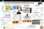 Low Cost and Durable Perovskite Solar Cells