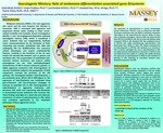 Vasculogenic Mimicry: Role of melanoma differentiation associated gene-9/syntenin