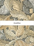 Pattern Research Project: An Investigation of The Pattern And Printing Process - Acanthus by Hongyi Zhu