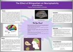 Redesigning the Brain: The Effect of Bilingualism on Neuroplasticity