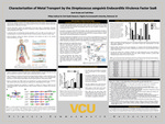 Characterization of Metal Transport by the Streptococcus sanguinis Endocarditis Virulence Factor SsaB