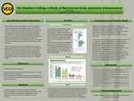 The Bamboo Ceiling: A Study of Barriers to Asian American Advancement