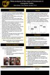 Meta-analysis of the origin of bimaturism in orangutan males by Mina Adnan